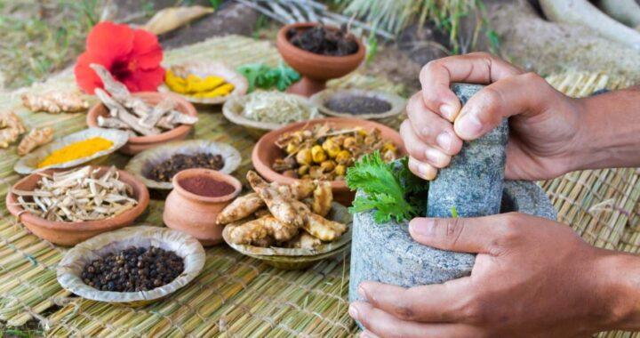 Nutrición ayurvédica en Nutrición ayurvédica