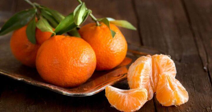 Valencia: Naranjas a domicilio