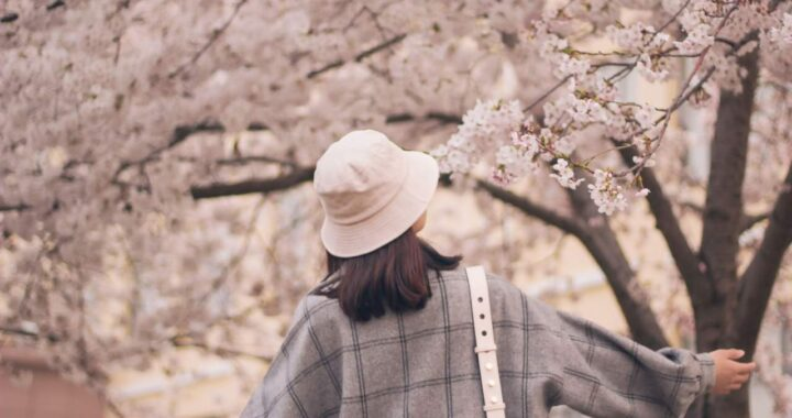 Freedom Moda: Prendas de ropa de moda primavera 2021