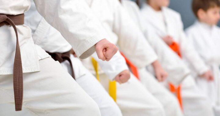 Los valores a través de la Escuela de Kenpo Kai Madrid El Dojo