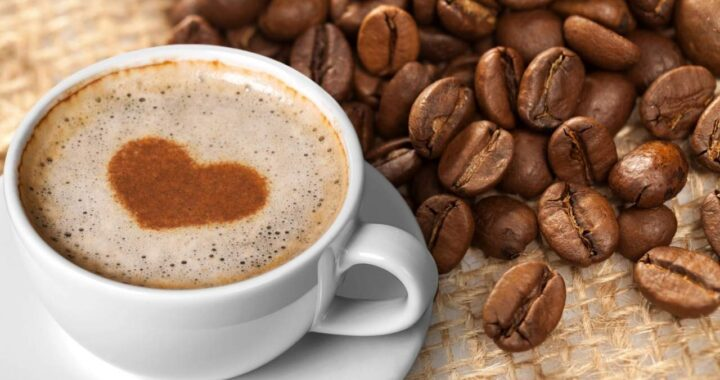 Distribuidores de Gran Caffè Garibaldi: Rufus Group