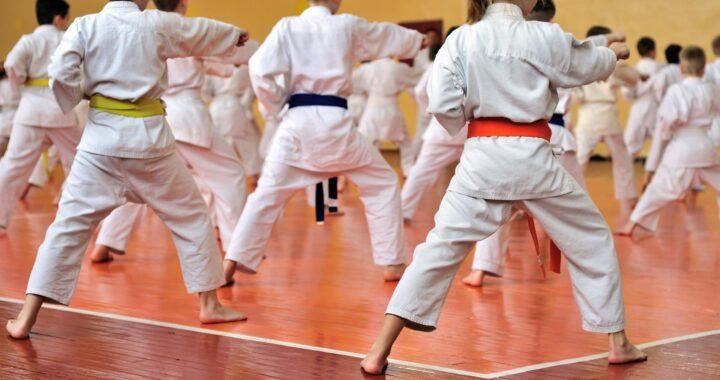 El Dojo, Escuela de Artes Marciales y Kenpo Kai en Madrid, es elegida como una de las principales opciones como extraescolar