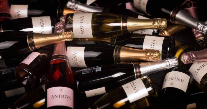 La innovación aportada en el mundo de los vinos por Antigva