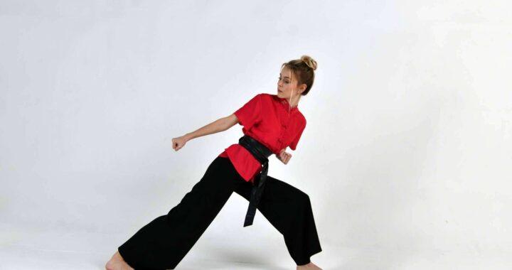 ¿Qué diferencia al arte marcial Mugendo de otras artes marciales?